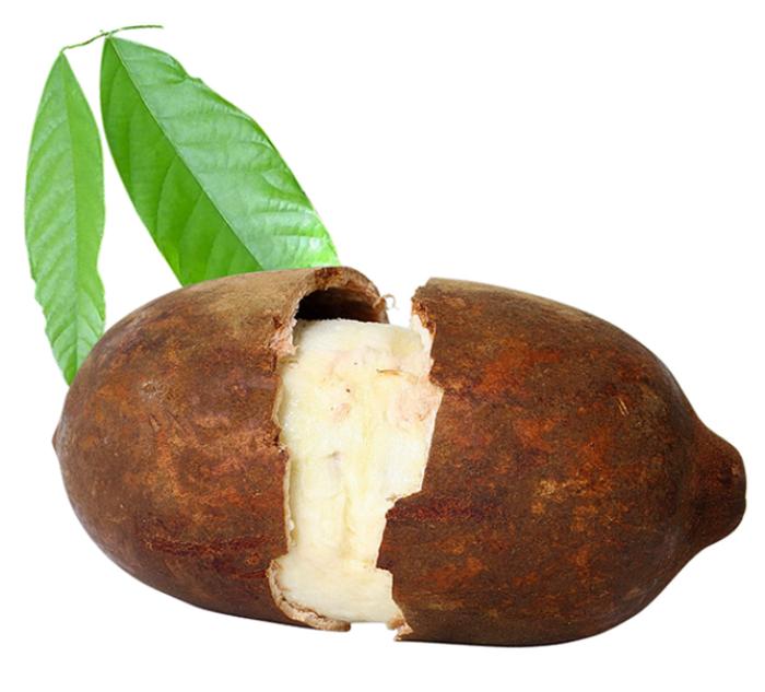 tropische früchte Cupuaçu großblütiger kakao