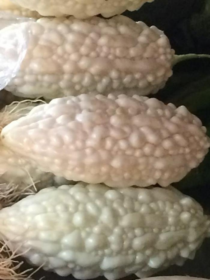 exotische früchte momordica