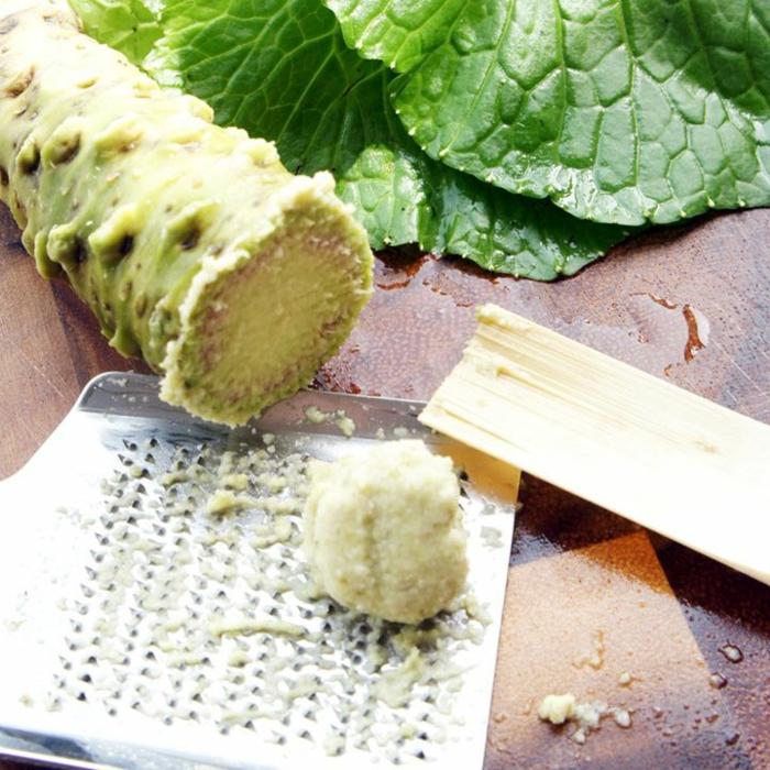 wasabi pflanze asiatische gerichte wasabi reiben