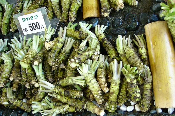 wasabi viele pflanzen auf dem markt in asia