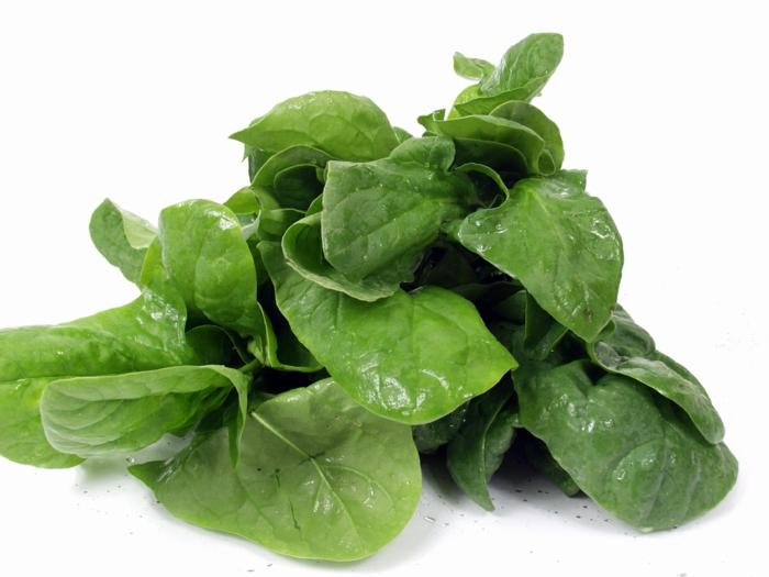gesund essen trockene haut spinat essen
