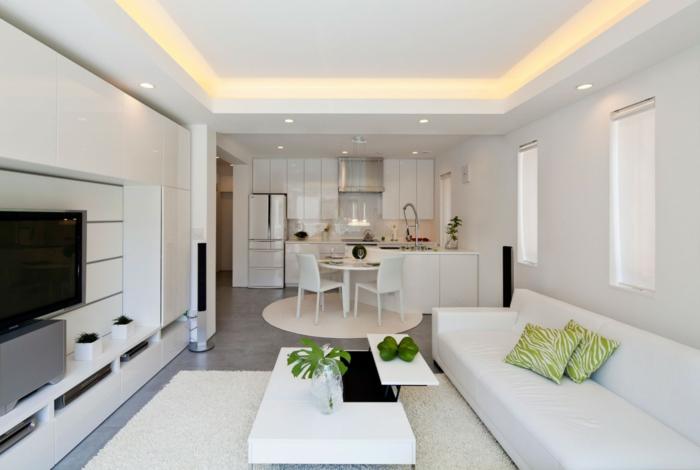 wohnzimmer design weißes sofa pflanzen küche integrieren