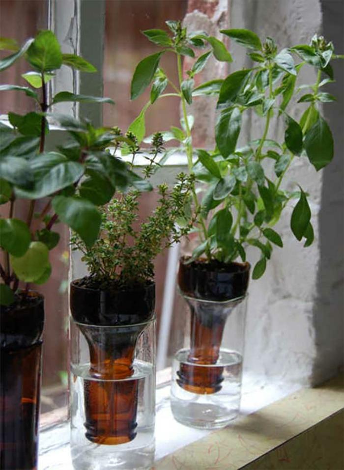 DIY ideen mit glasflaschen bastelideen jungpflanzen