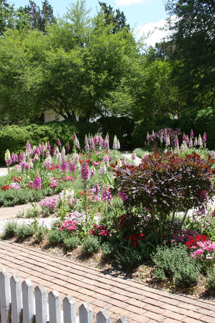 Garten und Landschaftsbau Ansichts Kräuter
