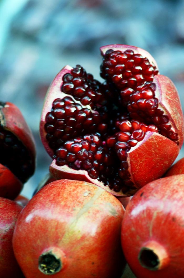 Granatapfel früchte jung