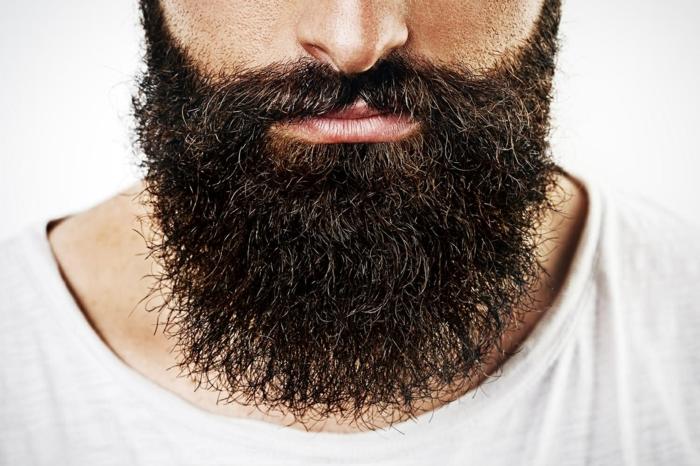 Männer mit Bart nur bart