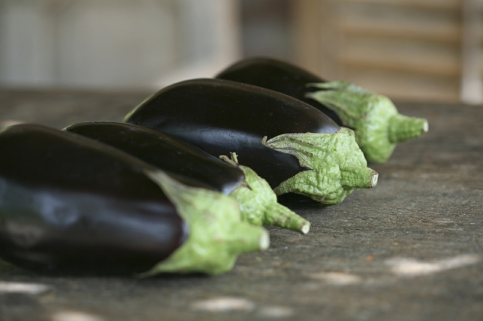 auberginen geschichte arten farben