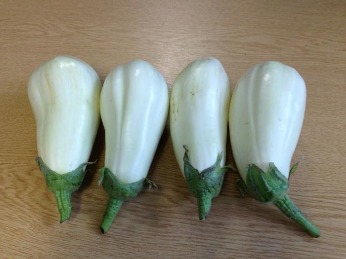 auberginen essen weiß arten geschichte