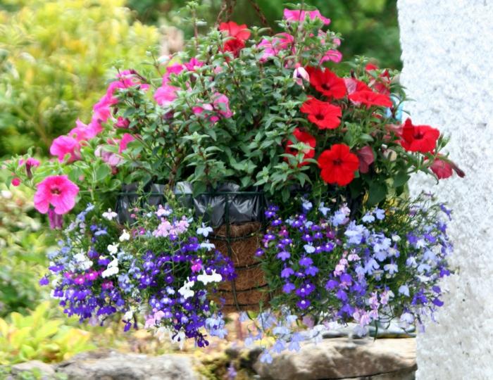 balkon dekorieren hängepflanzen kombinieren farbige blumen