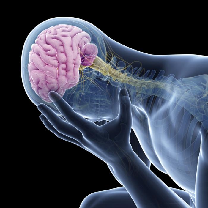chronische schmerzen kopfschmerzen gehirn