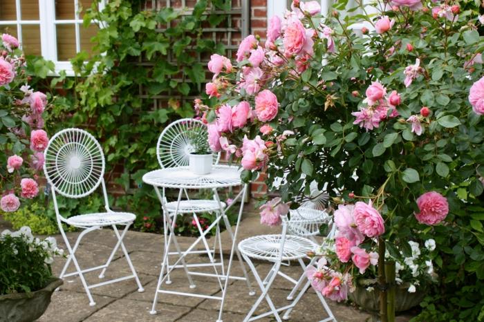 cottage garten blühende rosen sträuche metallene sitzecke romantisch