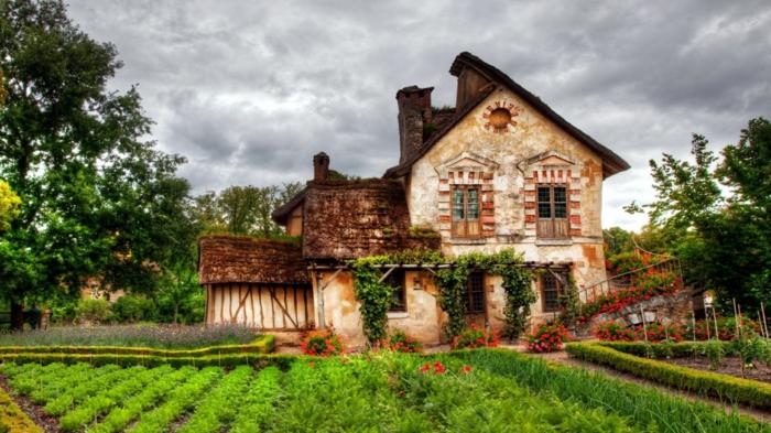 cottage garten urig gemüse wein geranien
