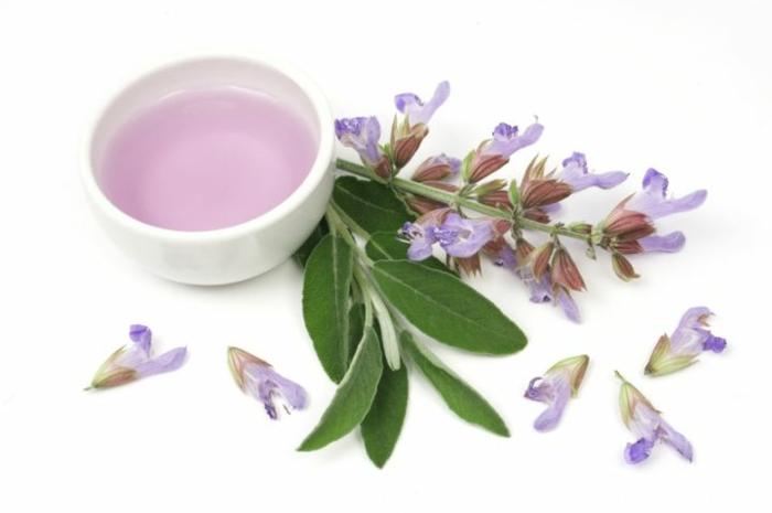 duftöle kaufen heilkräuter salvia aroma