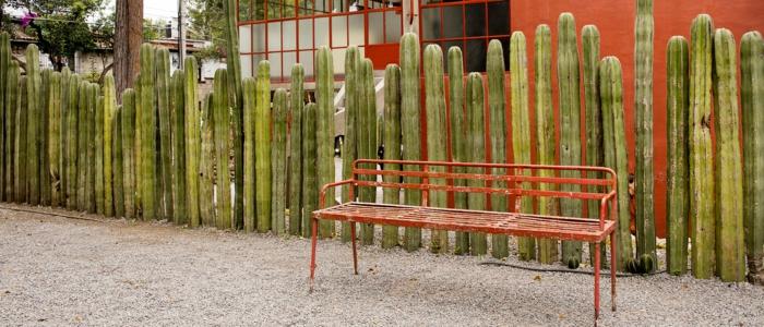 garten sichtschutz mexico restaurant natur falos frida