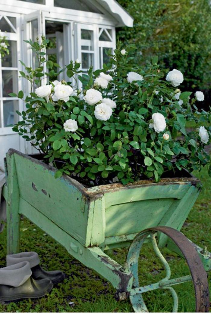 gartenideen vintage stil garten pflanzen weiße rosen