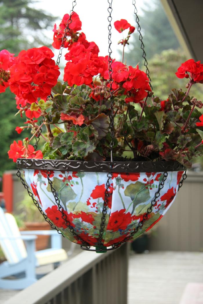 hängepflanzen balkon geranien rot außenbereich gestalten