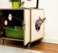 Originelle Katzenmöbel – schenken Sie Ihrer Katze mehr Spaß und Ruhe!