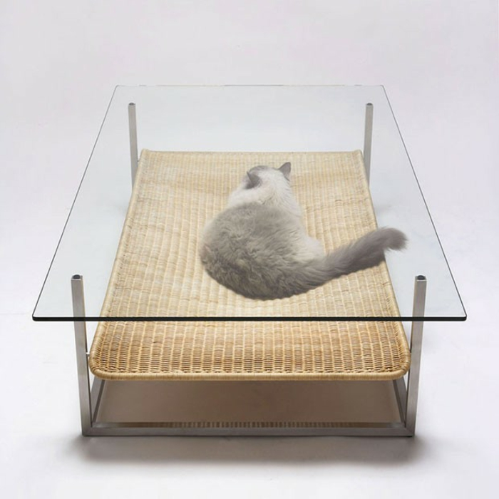 katzenmöbel couchtisch rattanauflage glas