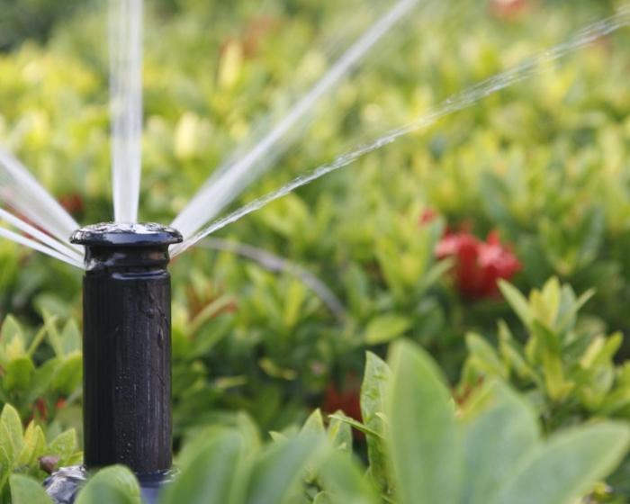 moderne gartengestaltung garten pflanzen bewässern