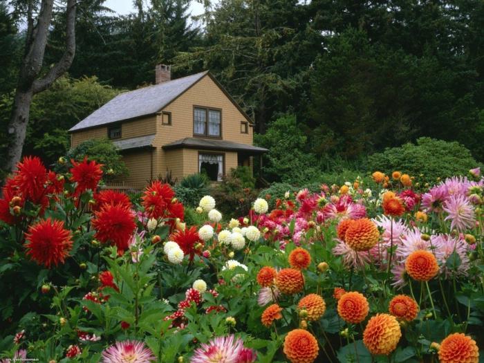 moderne gartengestaltung mit blumen – rekem, Garten und Bauen