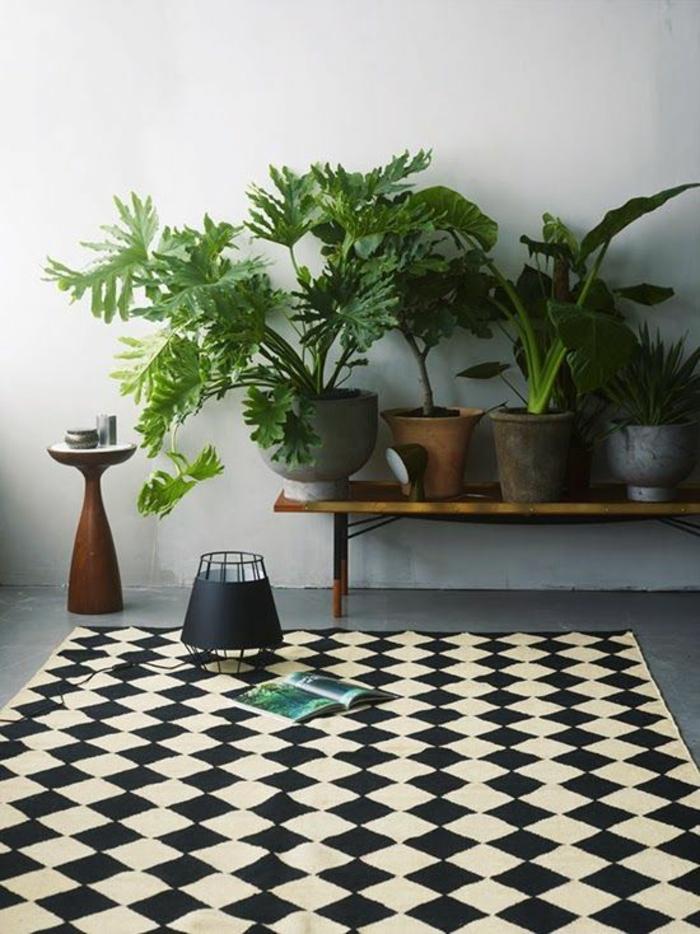moderne teppiche außenmöbel zimmerpflanzen
