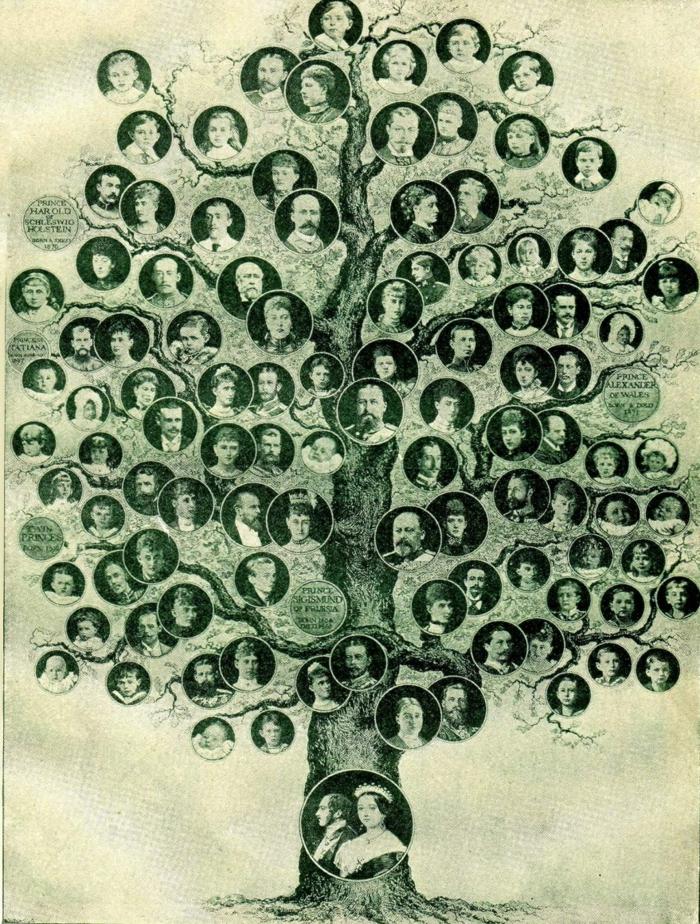 Familienstammbaum soziale adliger
