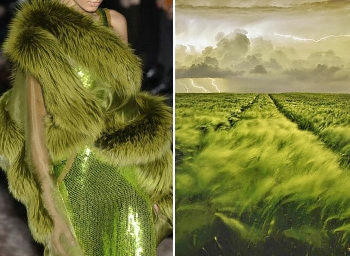 Inspiration mode natur grüne felder