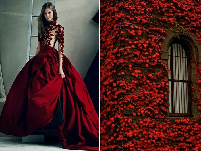 Inspiration mode natur rote blätter