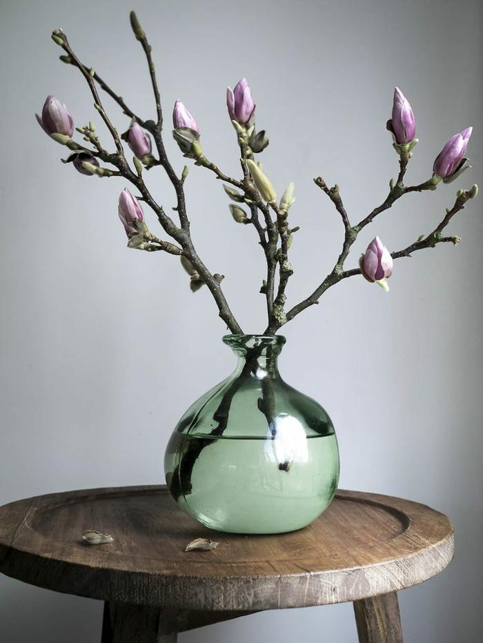 Magnolien blühten und zweigen in der vase vorgarten gestalten