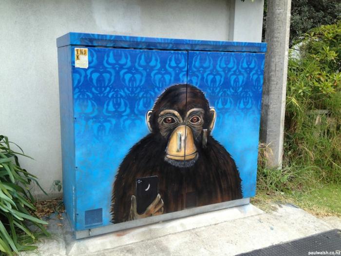 Street art Künstler schimpansen selfie