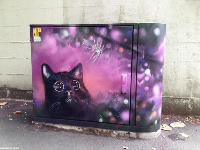Street art Künstler shiny cat