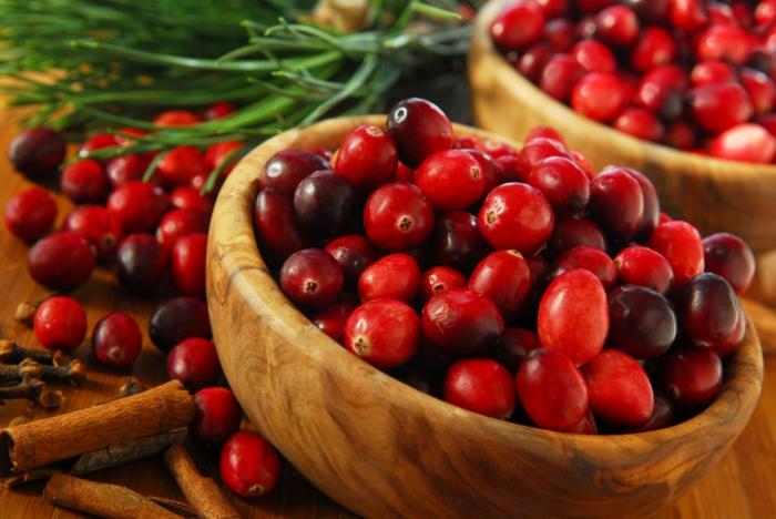 Was sind Cranberries frucht menge aromatisch