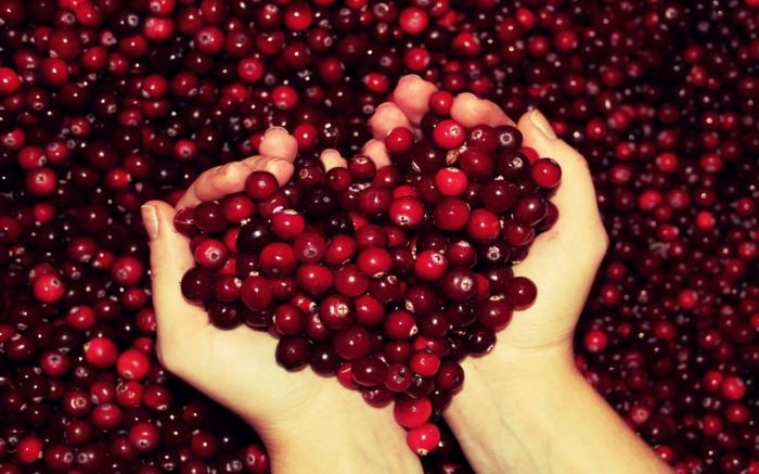 Was sind Cranberries frucht menge nord herz