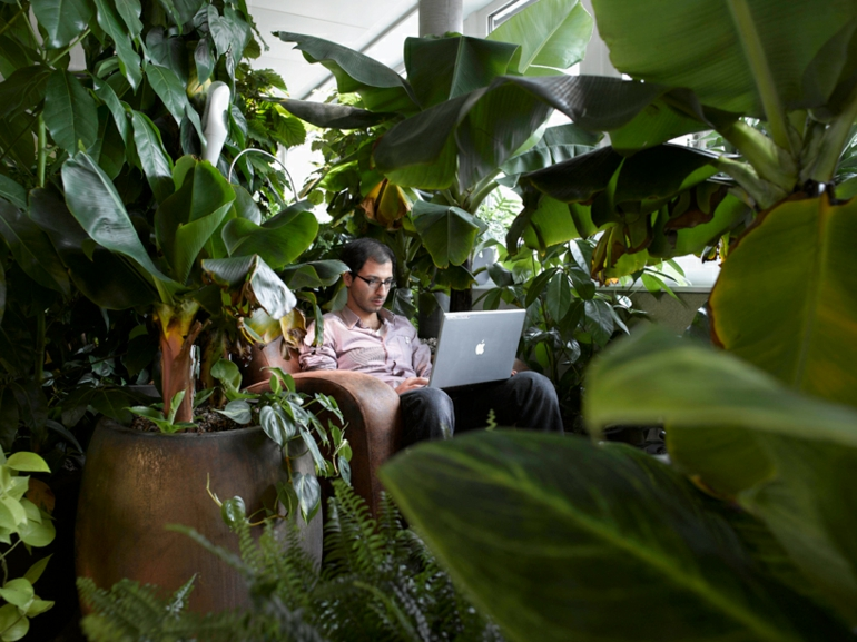 büroeinrichtung google zurich stress am arbeitsplatz grüne oase