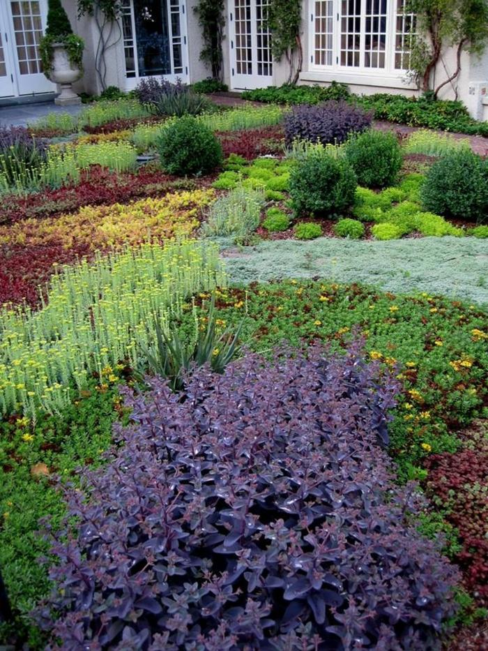 bodendecker garten pflanzen schönes exterieur