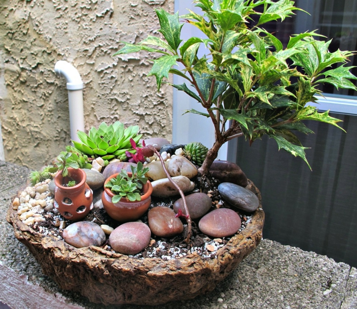 deko bastelideen mini garten beeindruckende pflanzenbehälter