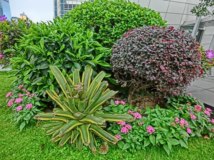 garten umgestalten passende pflanzen auswählen außenbereich