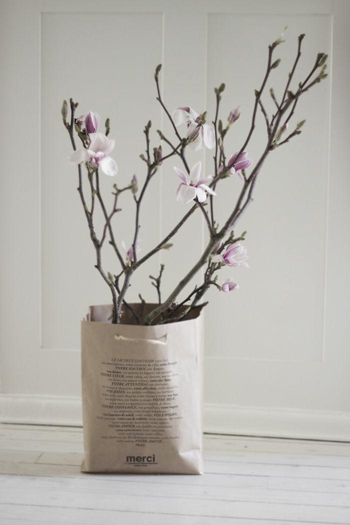 magnolien in papiertüte deko ideen