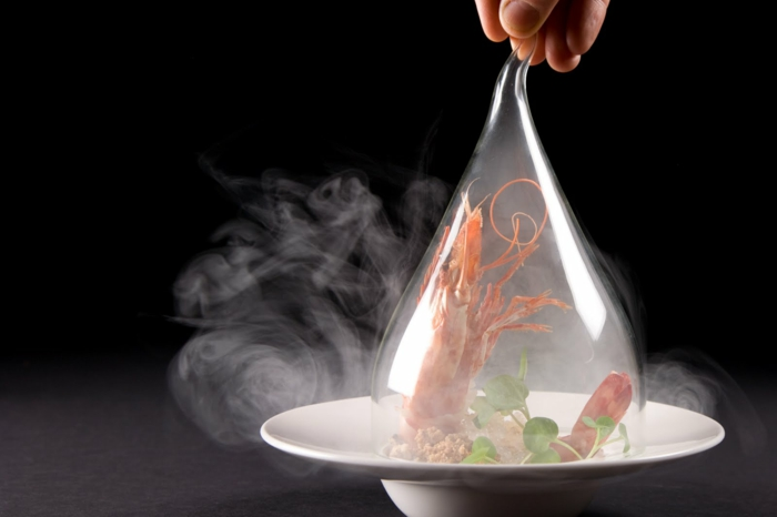 molekulare Küche krebs