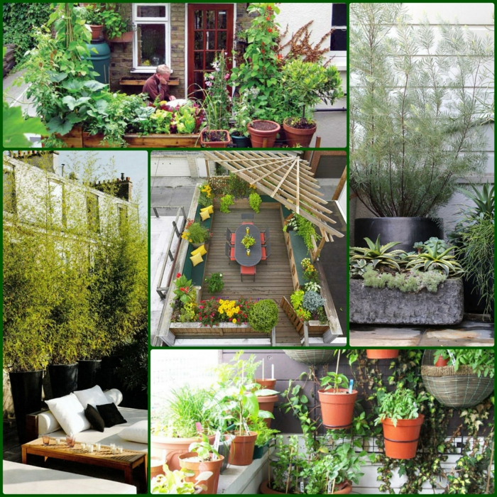 terrassenbepflanzung beispiele balkonpflanzen grüne terrassengestaltung