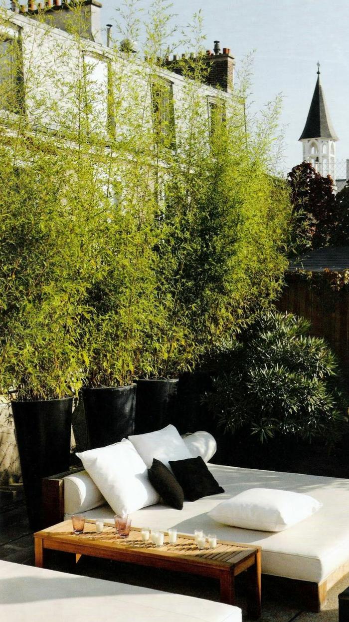 terrassenbepflanzung möbel und balkonpflanzen lebendiger sichtschutz