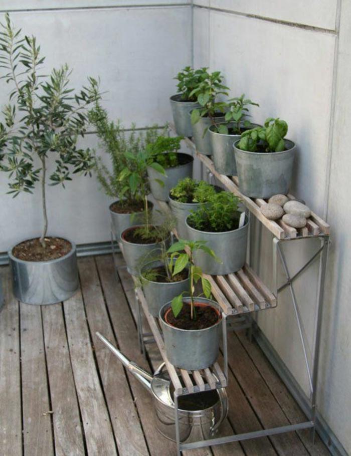 terrassenbepflanzung möbel und balkonpflanzen topfpflanzen eimer