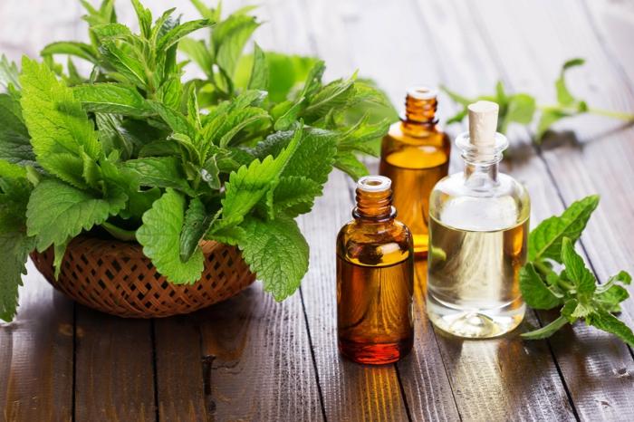 Naturreine ätherische Öle Aromaöle minzoel