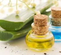 Was hilft gegen Sonnenbrand? – Nutzen Sie die heilende Wirkung der Aloe Vera Pflanze