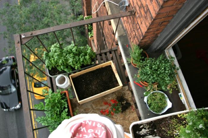 bio garten gestalten kleiner balkon gemüse