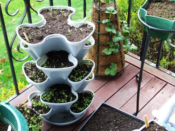 Bio Garten Gestalten Terrasse Ideen