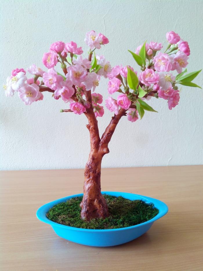 bonsai baum ideen diy kirsche blaues gefäß