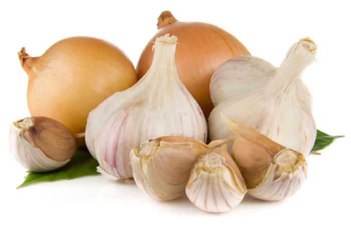 was essen bei magenbeschwerden zwiebeln und knoblauch
