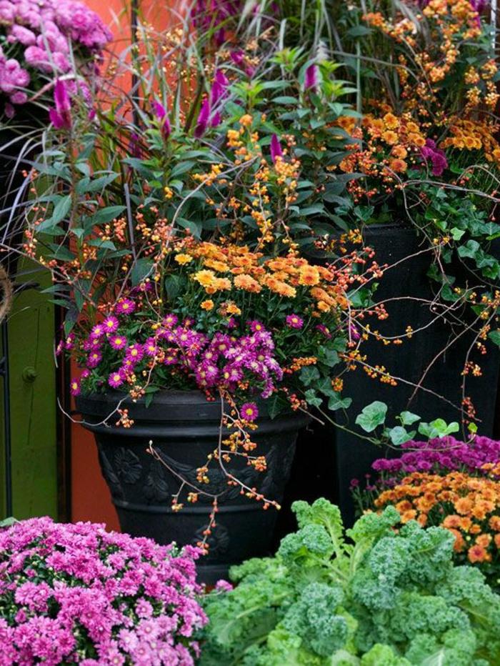 chrysanthemen herbstsorten blumentöpfe garten verschönern