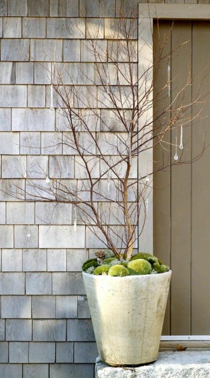 gartengestaltung mit topfpflanzen im winter